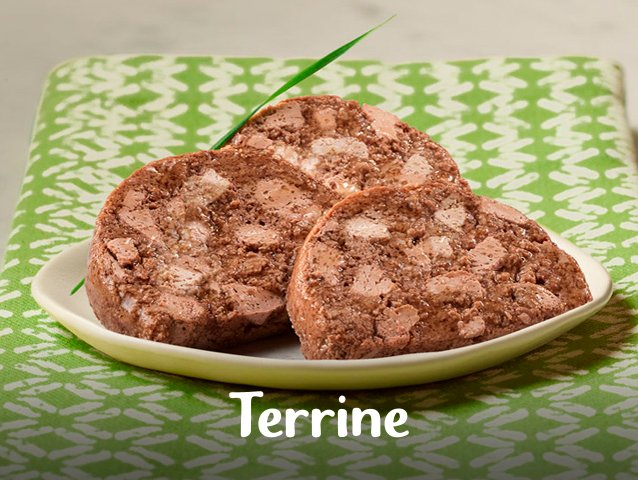 Fancy Feast® Terrine