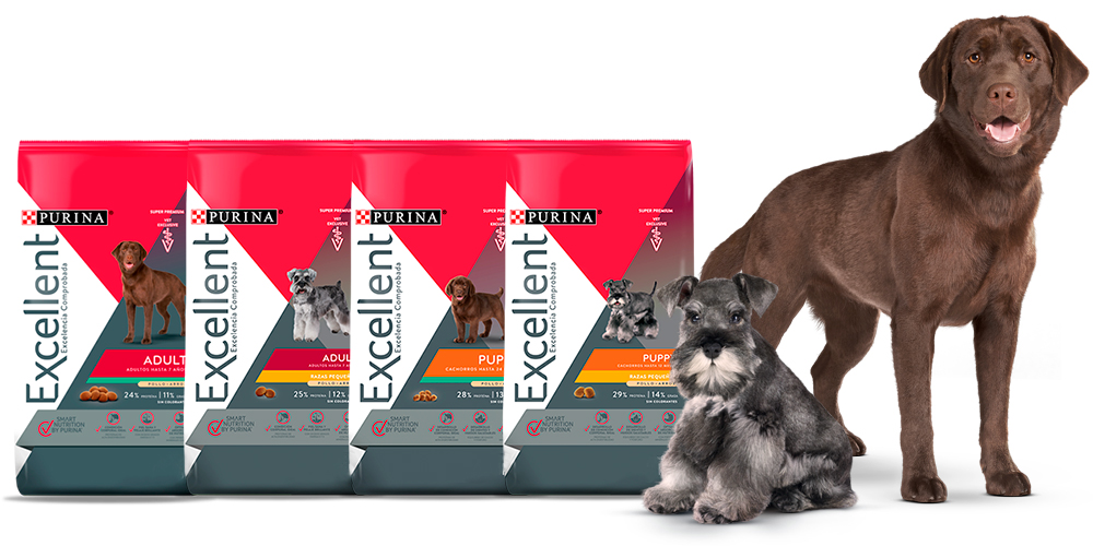 Purina Excellent productos