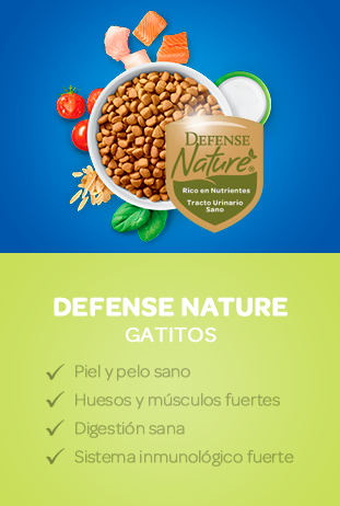 defense nature gatitos