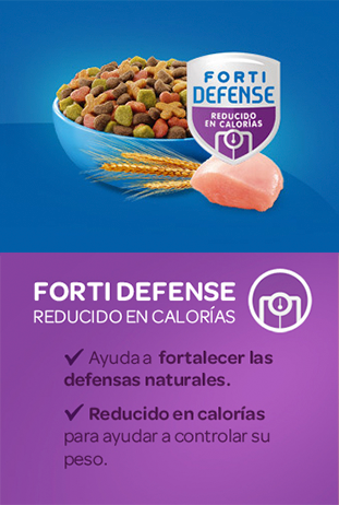 Forti Defense REDUCIDO