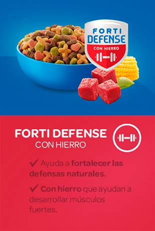 Forti Defense HIERRO