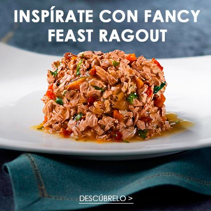 Fancy Feast® inspírate con fancy feast ragout
