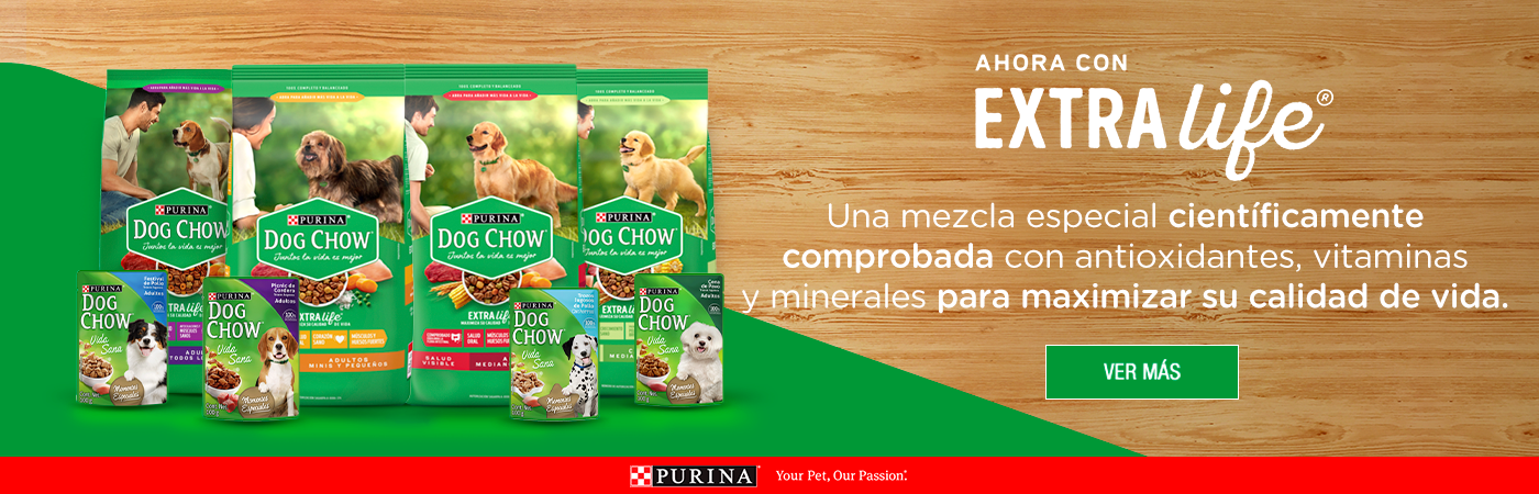 Purina_Banners_Latam_Dog-Chow.png