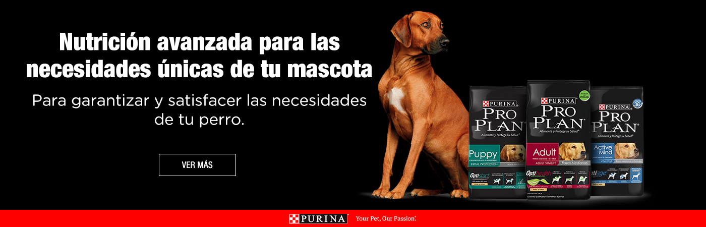 Purina_Banners_Latam_Pro-Plan-Perro.png