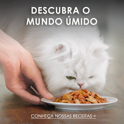 purina fancy feast racao úmida