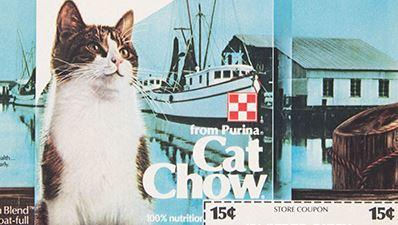 purina cat chow img