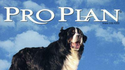 purina pro plan dog img