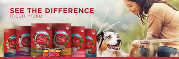 Purina One Product Family