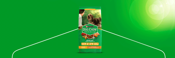 Purina Dog Chow banner adultos minis y pequeños img