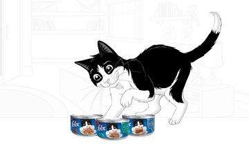 Purina Felix banner_filet img