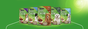 Dog Chow® adultos festival de salmon