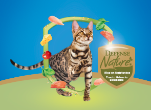 purina cat chow protect its health
