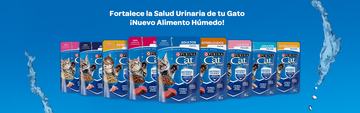 Cat Chow® productos wet