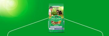 Purina® Dog Chow® Salud Visible Cachorros Minis y Pequeños