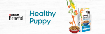 Purina Beneful banner healthy puppy
