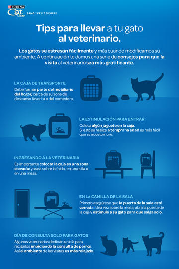 Cat Chow Tips para llevar a tu gato al veterinario