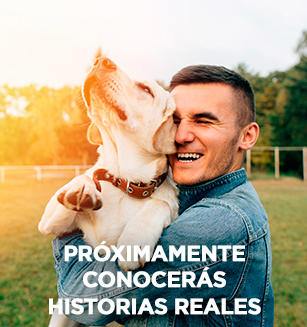 Purina One Historias reales