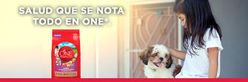 Purina One Banner img