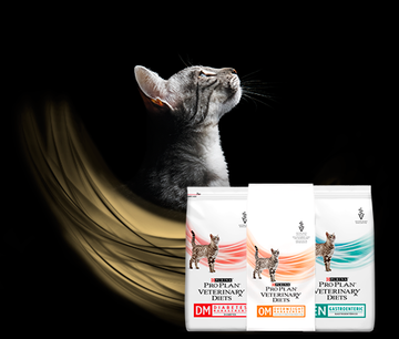 pro plan veterinary diets gatos