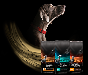 pro plan veterinary diets perros