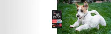 Purina® Pro Plan® Delicate Structure