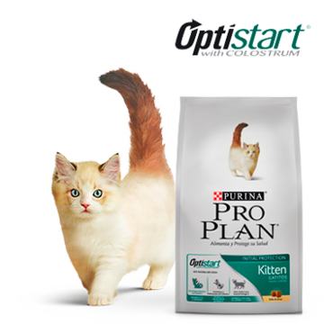 Purina® Pro Plan® Gatos Kitten Perú
