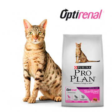 Purina® Proplan® Sterilized gatos