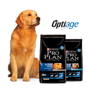 Purina® Proplan® perros-productos-active-mind