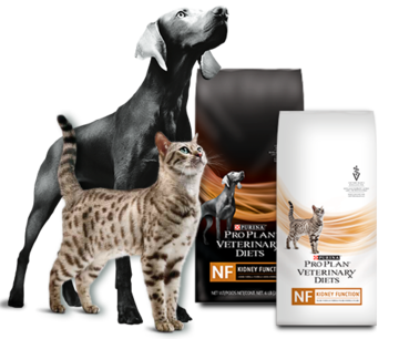 Purina®-Pro-Plan®-GAMA-DE-PRODUCTOS-veterinary-diets