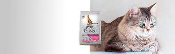 Purina®Pro Plan®Sterilized gato.jpg
