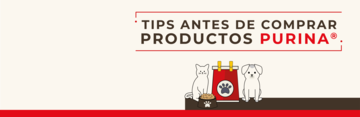 Tips antes de comprar purina