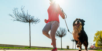 Purina® how to exercise with my dog