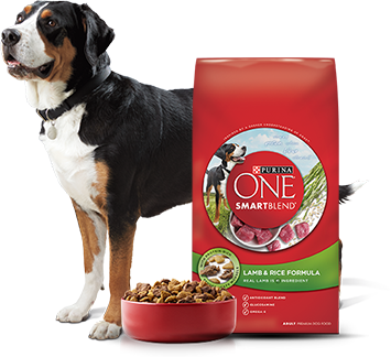 Purina One perros