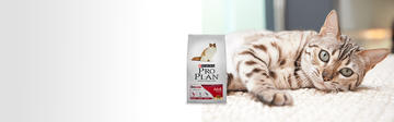 Purina® Pro Plan® banner adult