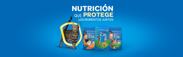 purina-latam-cl-catchow-hero-productos_0.png