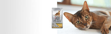 Purina® Pro Plan® rreduced calorie productos