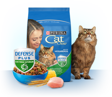 Cat Chow Defense Plus Hogareños
