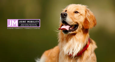 Purina® Proplan® Joint Mobility