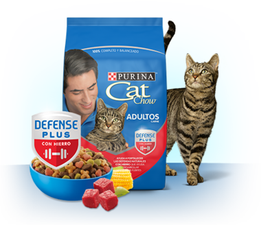Purina Cat Chow pack_interna_adultos_carne VE img