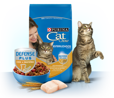 pack_interna_esterilizados_defense_plus